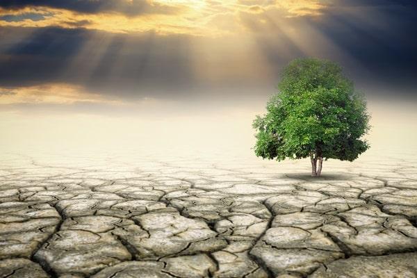 가뭄이 들면