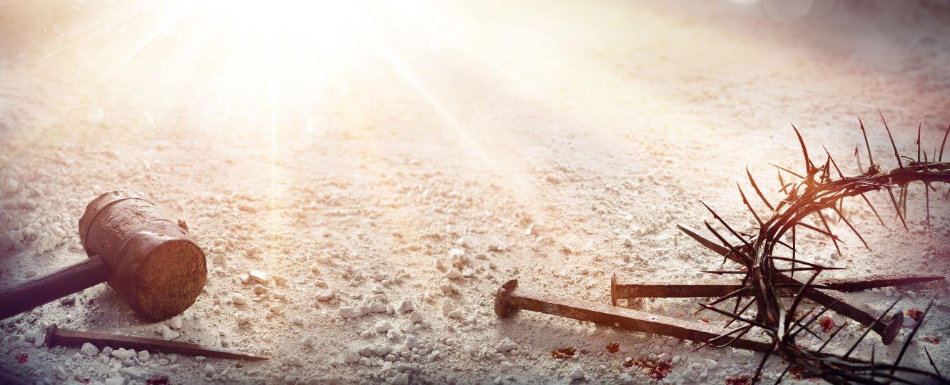 죽음의 땅과 하얀헬멧